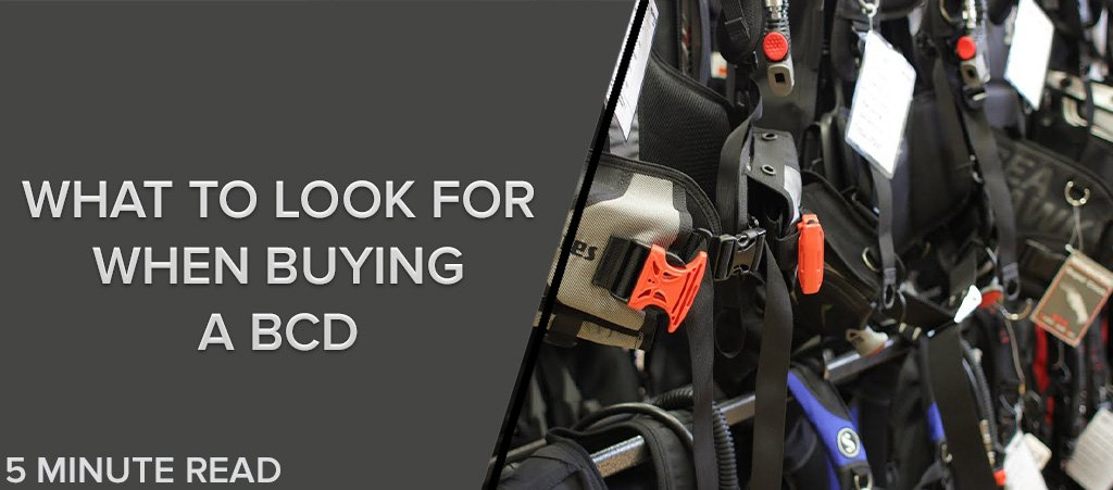 What to Look for When Buying a BCD
