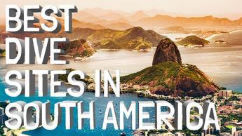 Best Dive Sites In South America