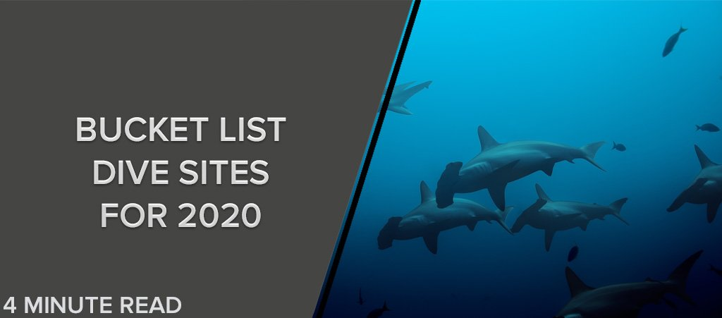 Bucket List Dive Sites For 2020