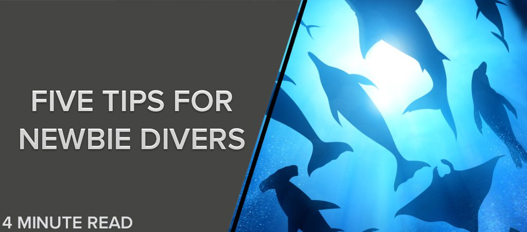 Five Tips For Newbie Divers